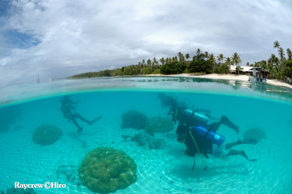 マーシャル諸島ダイビング