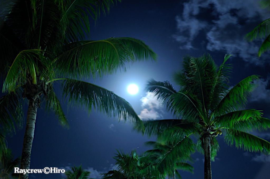 マーシャル諸島で観る満月【月光浴】