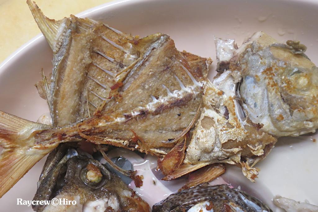 マーシャル諸島で釣りたての白子と卵を食べる【ホシカイワリ】
