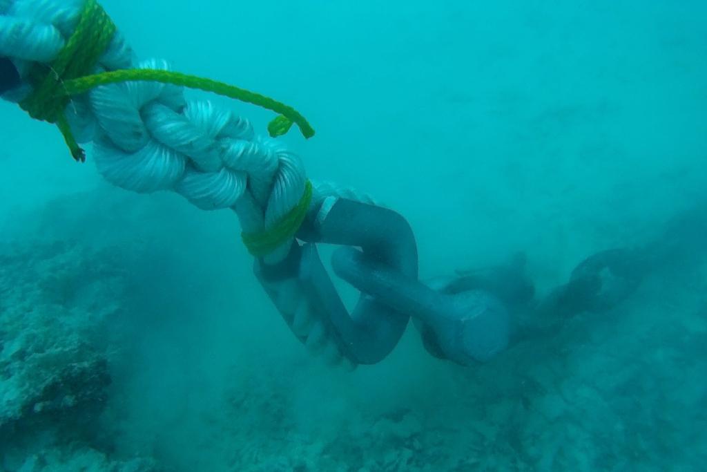 モイ養殖用ケージ修復作業【マーシャル諸島の養殖魚】