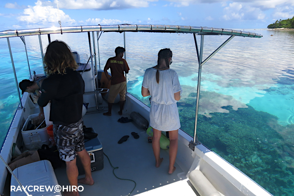 マジュロ環礁でサンゴ・シャコガイの養殖【クラムファーム】